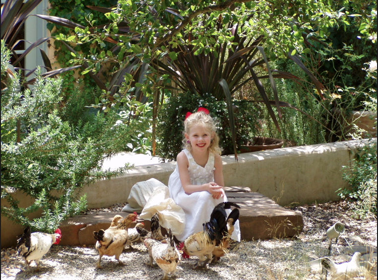 The inspiration for our French chickens!!